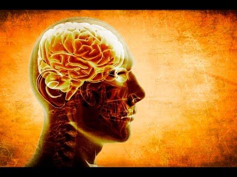 ALA (alpha-lipoic-acid) superfood for your brain