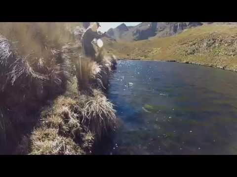 Fly Fishing The Highlands Of Ecuador - Rainbow Trout - Quito, Cuenca