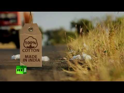 100% Cotton. Made in India (Trailer) Farmers commit suicide after planting GMO cotton.