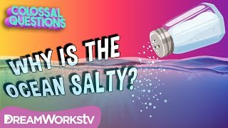 Why Is The Ocean Salty? | COLOSSAL QUESTIONS