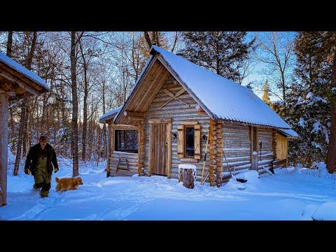 A New Beginning | Sauna Location, Logs, Workshop Build, Bear Chops on the Campfire