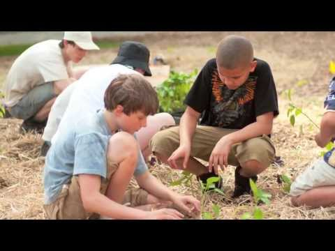 Part 3/3 - Growing a Model Sustainable Campus: UMass Permaculture Documentary Series