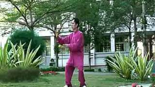 Tai Chi Qigong in 18 Movements