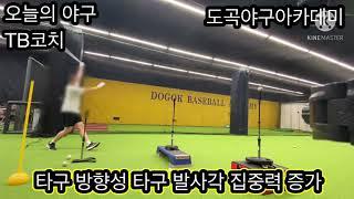 야구 타격 교정 훈련법