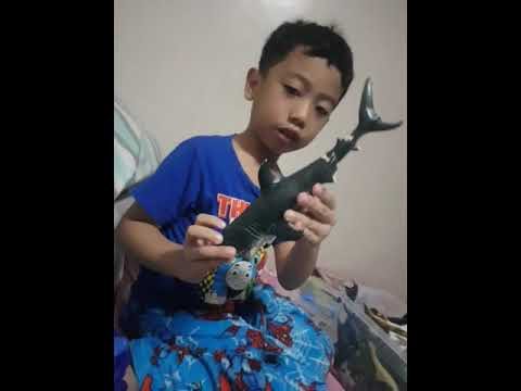 Andrei's shark toy review