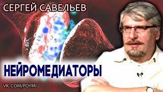 Правда о нейромедиаторах. Савельев С.В.