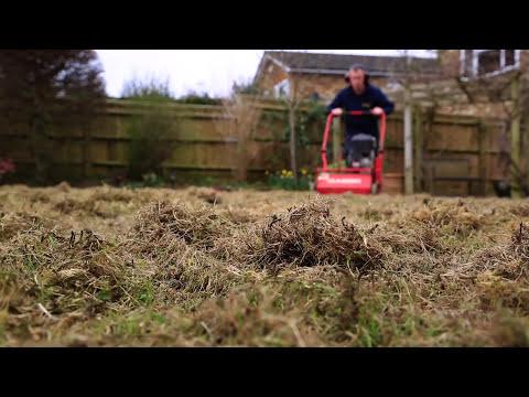 Lawn Scarification -
