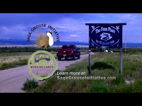 The Sage Grouse Example: Voluntary Conservation in the American West