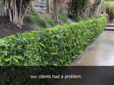 Bobs Wall - Turning An Unsightly Block Wall Into A Green Feature...