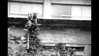 岡山県総社市という元門前町の街ぶら写真を撮りました。 そして『長い坂...