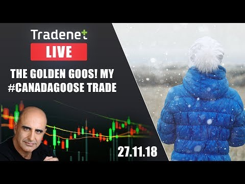 Tradenet Trading Room - The Golden GOOS! My #CanadaGoose Trade...