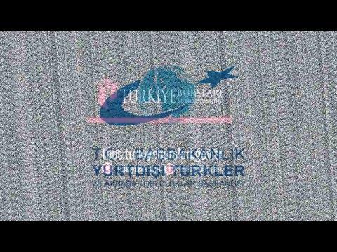 How to Apply Turkiye Scholarships ( 9 Academic Qualification) (EN-TR)