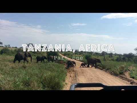 Safari Vlog || Tanzania part 1