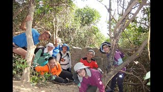 Publication Date: 2020-01-05   Video Title: 2020-01-04 山Friends - 水泉澳北坡  畢