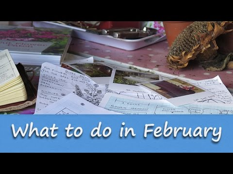 Jobs to do in the Allotment Garden - February