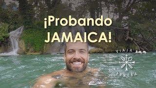 (11.6 MB) Viaja y Prueba en Jamaica Mp3