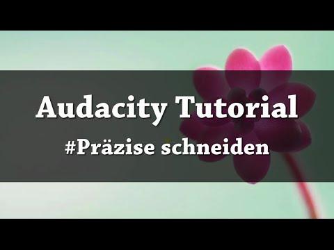 Audioufnahmen präzise schneiden mit Audacity | Tutorial
