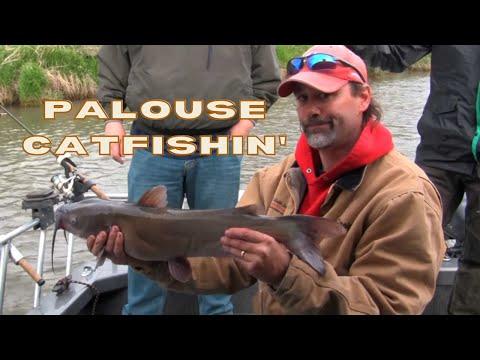 Catfishing On The Palouse