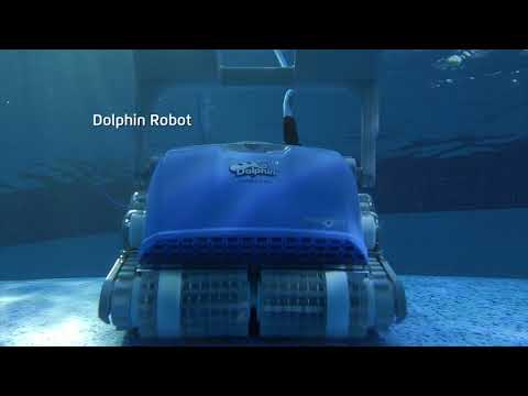 Dolphin Pool Cleaning - Couples TVC NZ