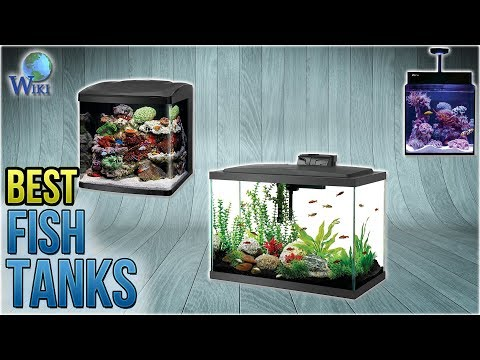 10 Best Fish Tanks 2018
