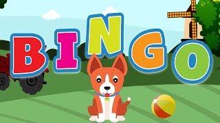 Bingo Dog Song - Nursery Rhymes With Lyrics | Kids Songs | Cartoon Animation for kids