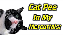My Nike Mercurials Smell Like Cat Pee!