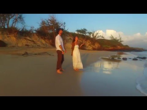 """Lions Gate"" (Official Video) ALOKA & Sarah Naia Soleil (Ft. Momentology)"