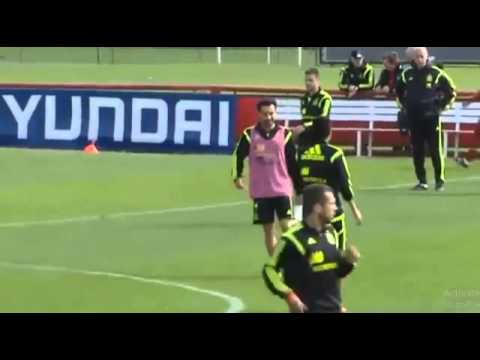 Cesc Fabregas is excluded from Spain World Cup training by Del Bosque 2014
