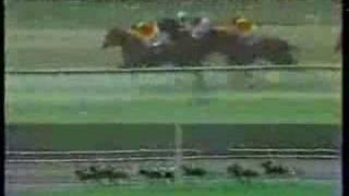 Clasico Jose Antonio Paez 1982