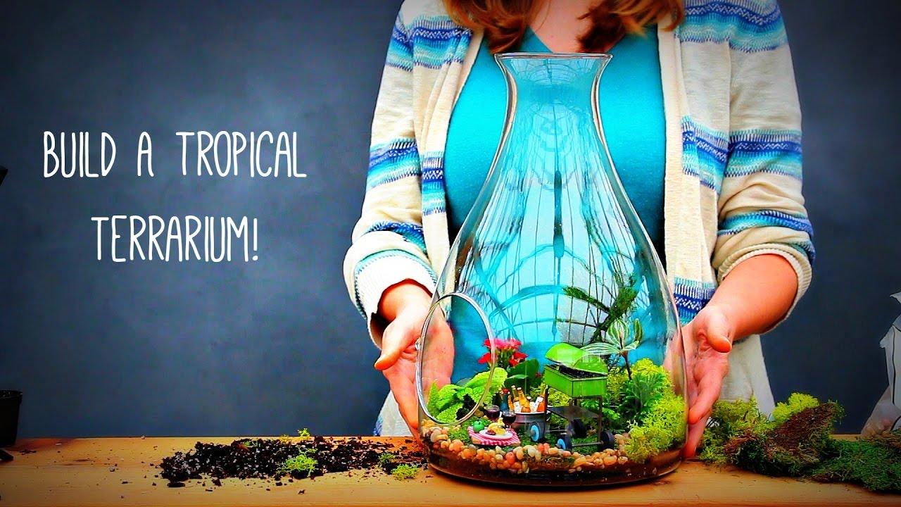 How To Build A Tropical Terrarium Youtube