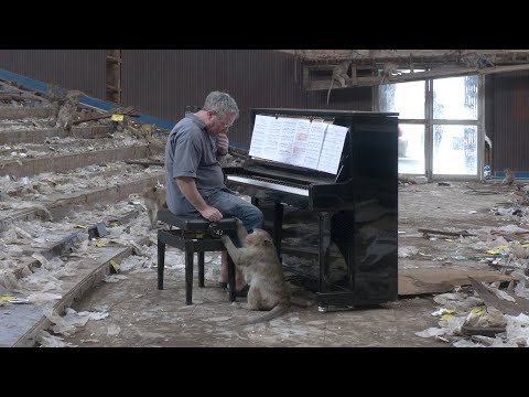 Piano for Macaques in Abandoned Cinema - Thailand #1