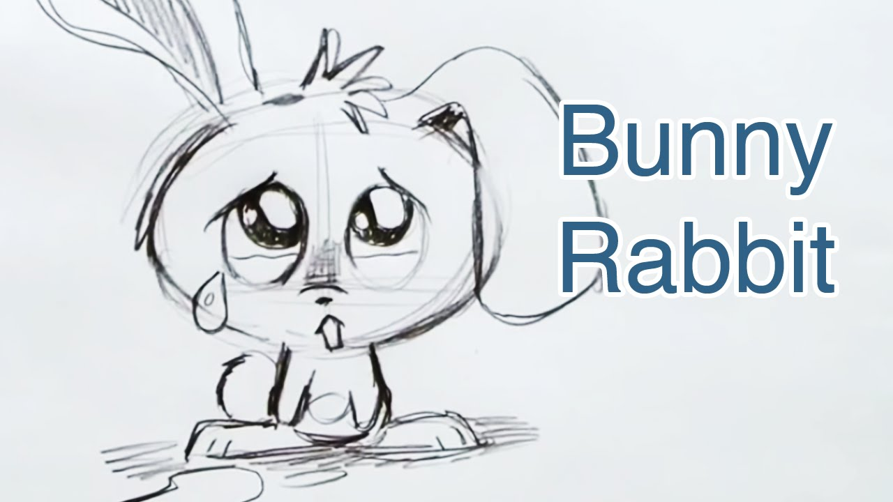 How to draw a bunny rabbit step by step youtube