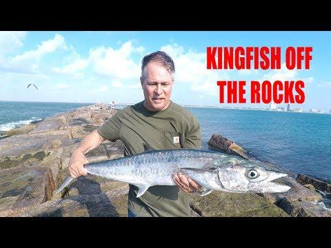FISHING FOR KINGFISH