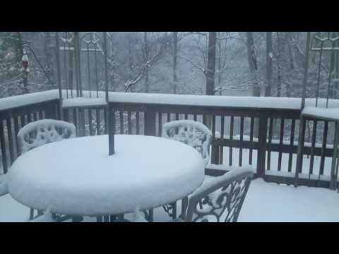 First snow, January 8th, 2017.  2 to 4 inches here in Richmond,  VA