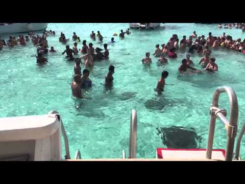 Family Cruise 2016 | Cayman Island | Snorkeling Excursion
