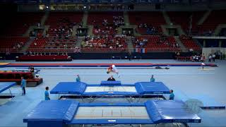 Gambar cover SOEHN Keegan (CAN) - 2017 Trampoline Worlds, Sofia (BUL) - Qualification Trampoline Routine 2