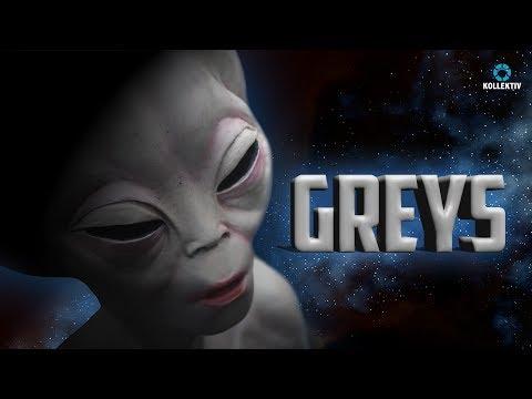 DIE GREYS - Die Geschichte der kleinen, grauen Aliens