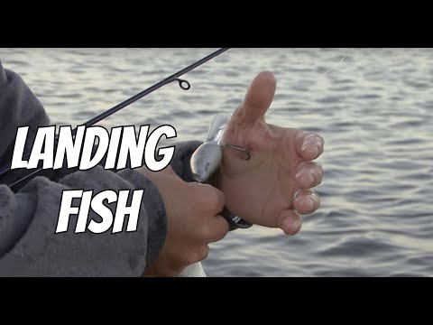 How To Land Fish | Kayak Bass Fishing | JUST THE TIP