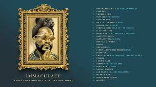 KABAKA PYRAMID x FEDERATION SOUND - IMMACULATE MIXTAPE