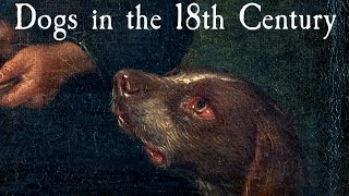 Dogs In The 18th Century - Q&A