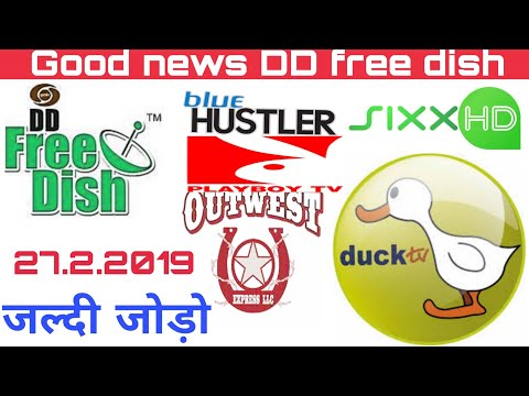 Good News DD Free Dish Add New Channel Playboy TV And Duck TV And Blue Huster