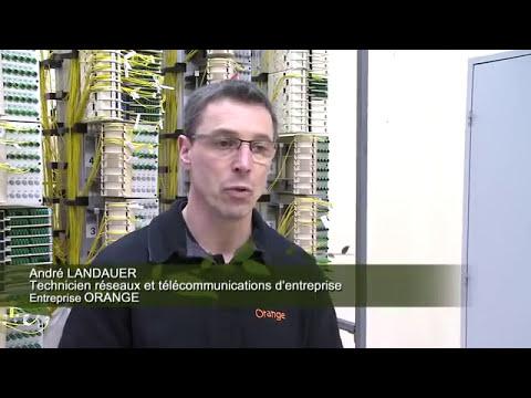 Technicien(ne)  réseaux et télécommunications d'entreprise