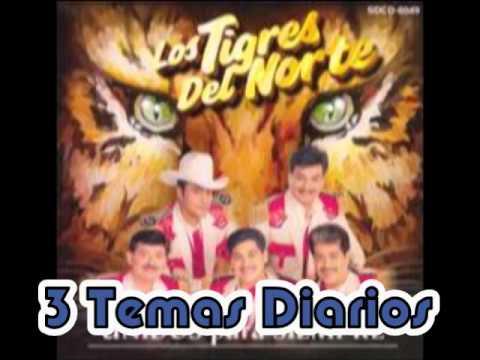 Si Me Vas a Dejar__Los Tigres del Norte Album Unidos para Siempre (Año 1996)