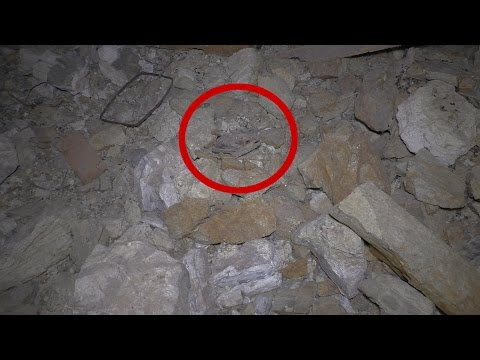 Thumbnail: What The Heck Did I Find In This ABANDONED Nevada Gold & Silver Mine Tunnel? Is It A Bat Or A Bird?
