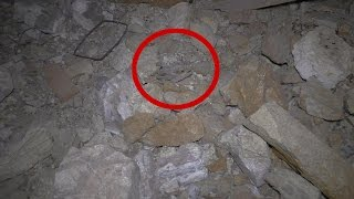 What The Heck Did I Find In This ABANDONED Nevada Gold & Silver Mine Tunnel? Is It A Bat Or A Bird? thumbnail