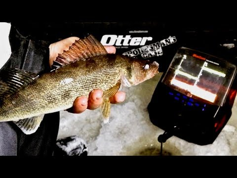 Ice Fishing for BIG Walleye (Day 1 The Party Crasher!)