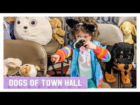 Dogs of Town Hall (Old Dominion Meow Mix Response)