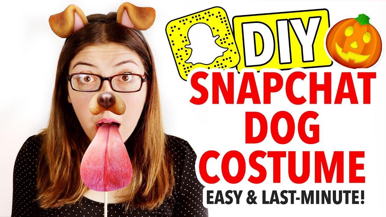 diy snapchat dog costume last minute halloween idea hgtv handmade youtube. Black Bedroom Furniture Sets. Home Design Ideas