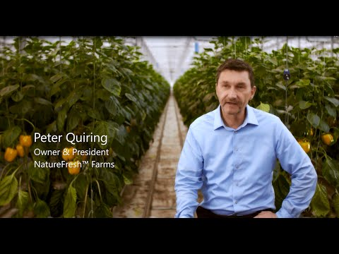 Nature Fresh Farms improves yield with Priva greenhouse automation and Microsoft