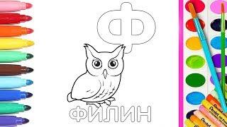 💖Раскрашиваем АЛФАВИТ Как раскрасить ФИЛИНА  Изучаем букву Ф   Познавайка ТВ 💖